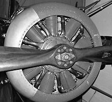 Closeup of a Sopwith Triplane by PaulaP