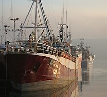 Fishing Boats Dingle Harbour, Ireland by Paul Playford