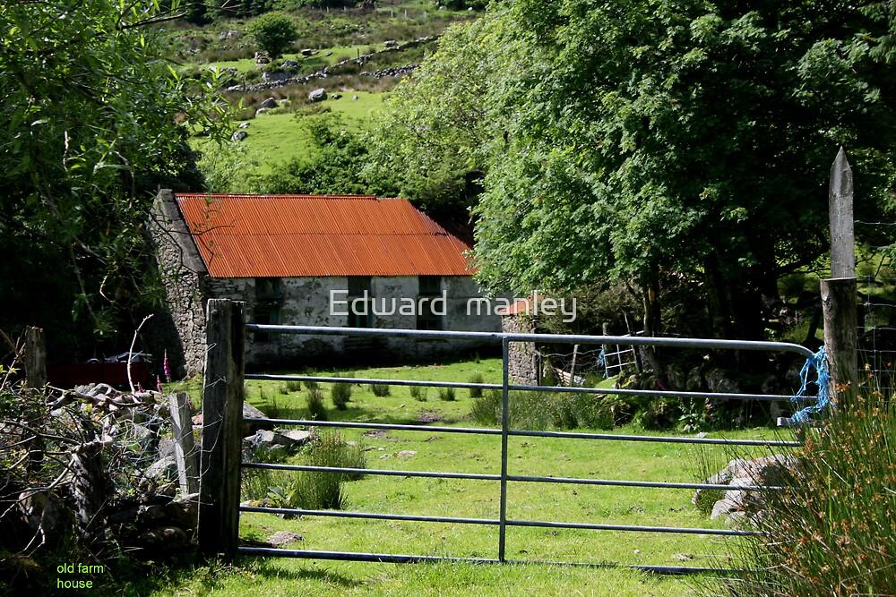 Irish home stead by Edward  manley