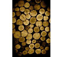 Logs Photographic Print