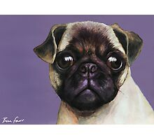 Pug Painting Photographic Print