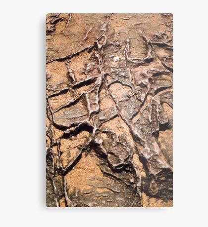 Rock Patterns Metal Print
