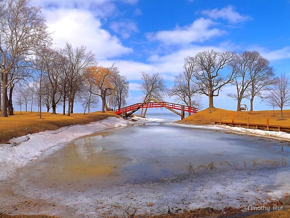 Red Bridge by Timothy  Ruf
