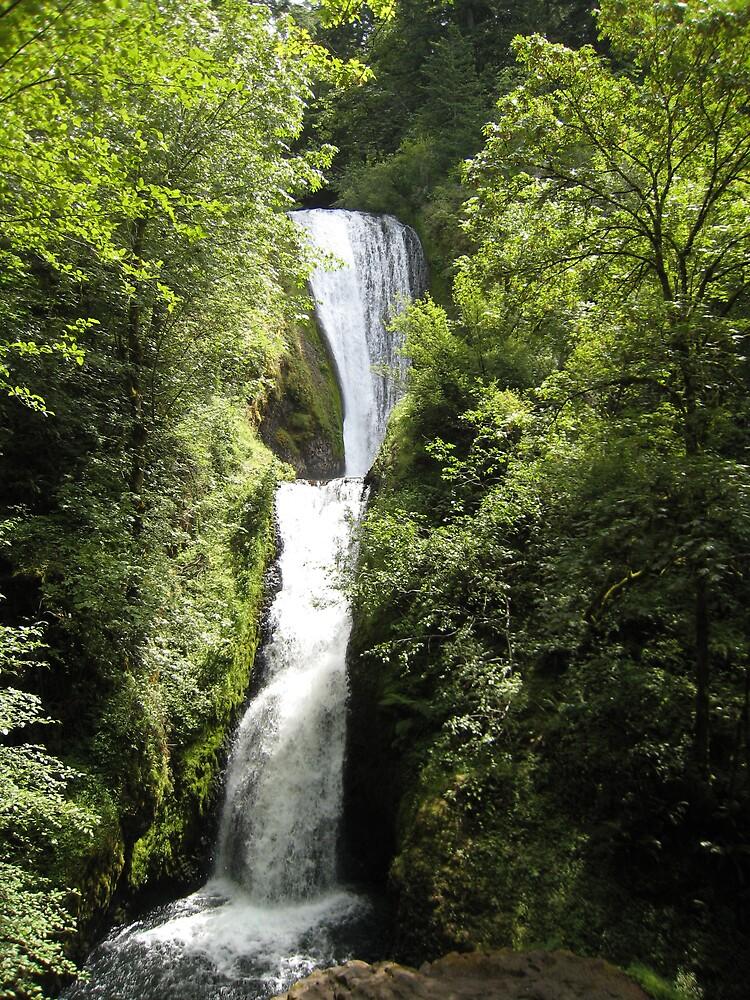 waterfall by Samantha Lowe