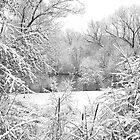 Winter Snow At Huron River by Phil Perkins