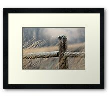 Snow in the Park Framed Print