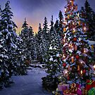 Way Outdoor Christmass Lights by Charles & Patricia   Harkins ~ Picture Oregon