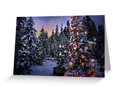 Way Outdoor Christmass Lights Greeting Card