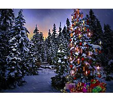Way Outdoor Christmass Lights Photographic Print