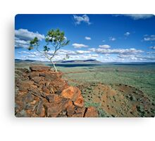 Facing the Elements, Karijini NP Canvas Print