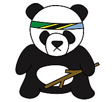 Tanzanian Battle Panda Photographic Print