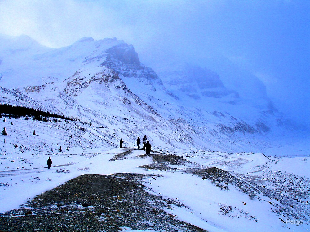 Columbia Icefields by Paige