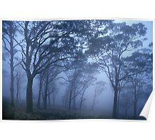 Misty Blue Poster