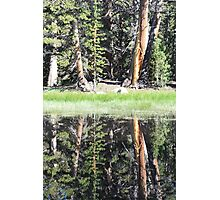 Mirror Image Photographic Print