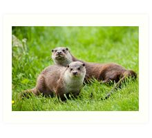 European otters Art Print