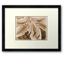 #95 Framed Print
