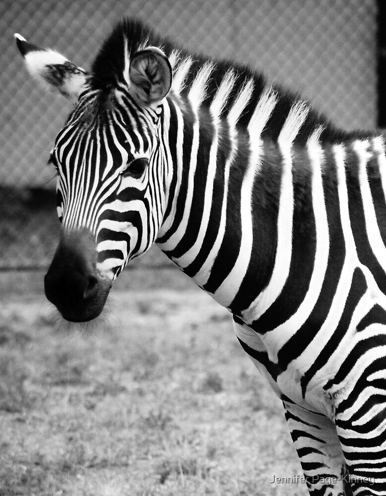 Black on White or White on Black in Black and White by Jennifer Page-Kinney