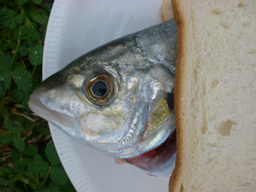 Fish Sandwich by Carlz