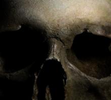 The skull Sticker