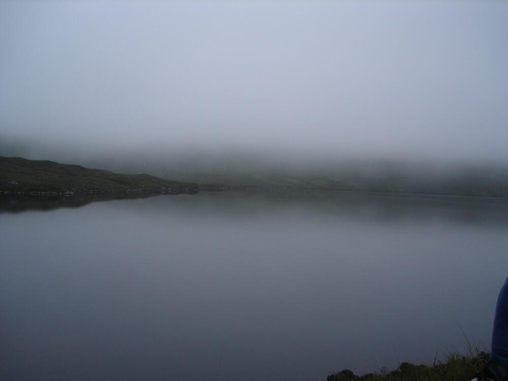 Mist by skippy