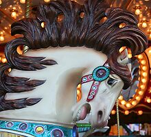 carrousel horse by Elizabeth Heath