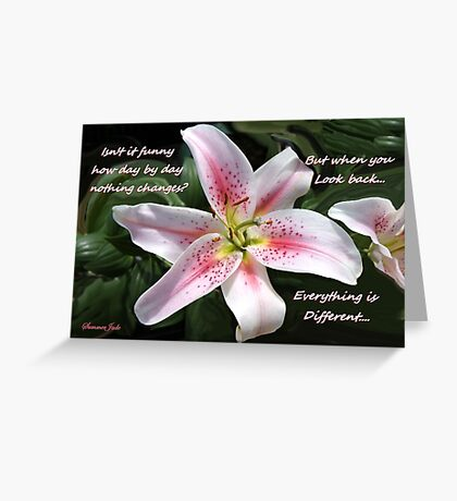 Stargazer Lily with a Question Greeting Card