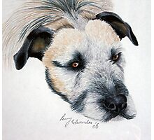 My wolfhound Brutal Photographic Print
