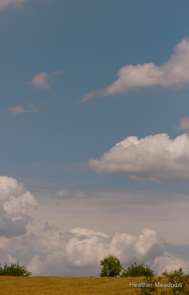 Big Sky by Heather Meadows