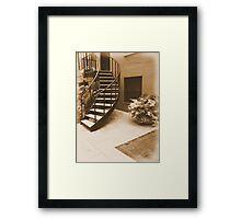 #116 Framed Print
