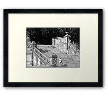 #118 Framed Print