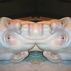 man of 2 faces by Ana Thomas