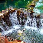 waterfall at busch gardens by LoreLeft27