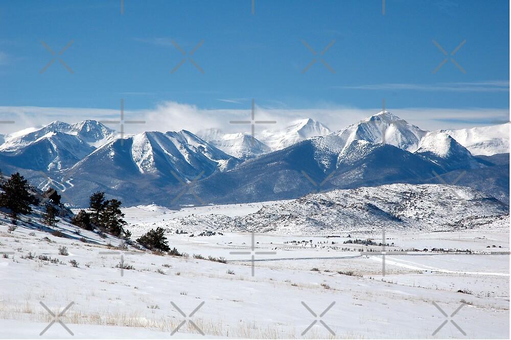 Winter In Colorado by Holly Werner