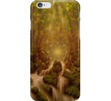 Divine Encounter iPhone Case/Skin