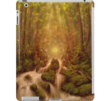 Divine Encounter iPad Case/Skin
