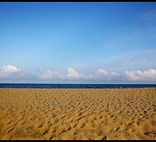 The Beach by templar