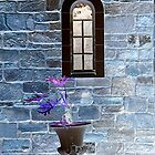 Church window by patapping