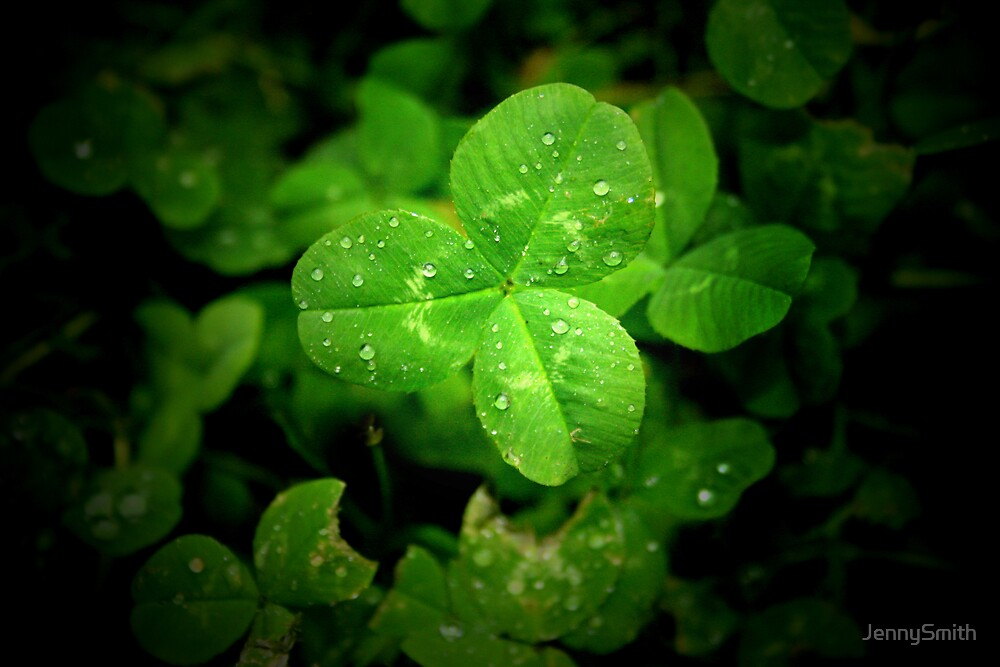clover by JennySmith