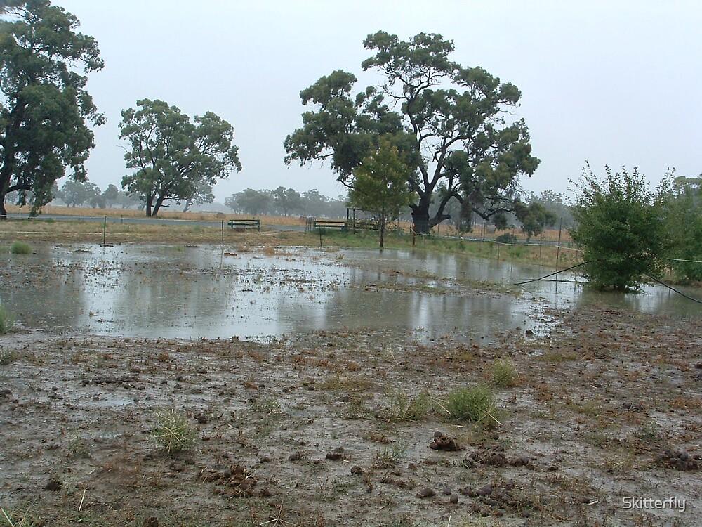 Mud Pool by Skitterfly