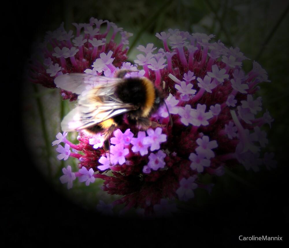 Bee by CarolineMannix