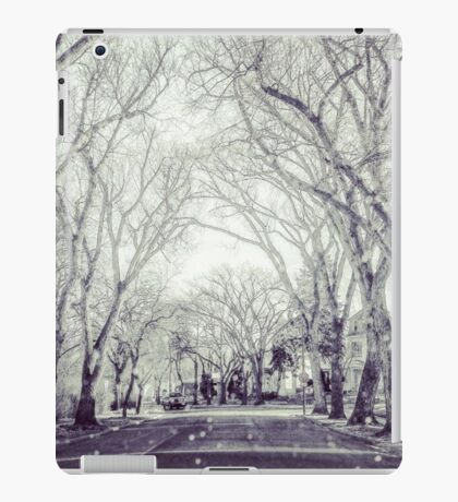 Tree Lined Rural Street iPad Case/Skin