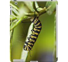 Monarch caterpillar iPad Case/Skin