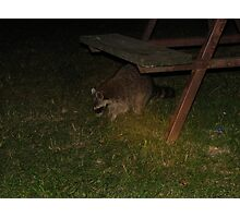 A Thief In The Night Photographic Print