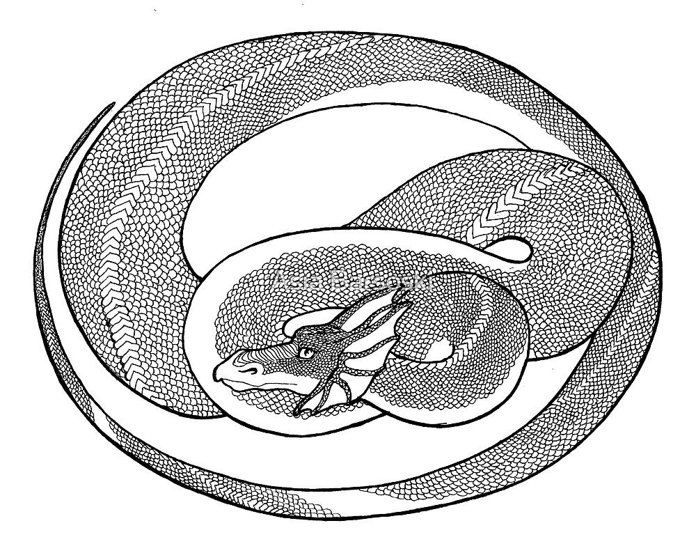 Dragon Medallion by Asia Barsoski