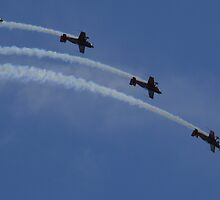 Air Acrobats by Matthew Weaver