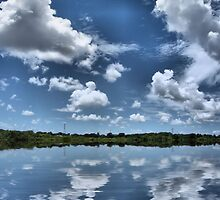 puffy clouds on blue by sonygirl