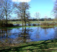 Bartley Water (1) by Gordon Hewstone