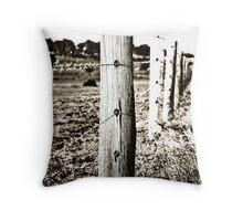 Morpeth Fence Throw Pillow