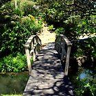 A Footbridge In Piahia by lezvee