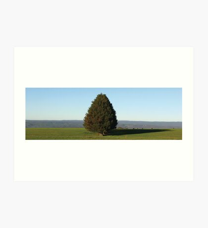 Trees at Hidden Valley Art Print
